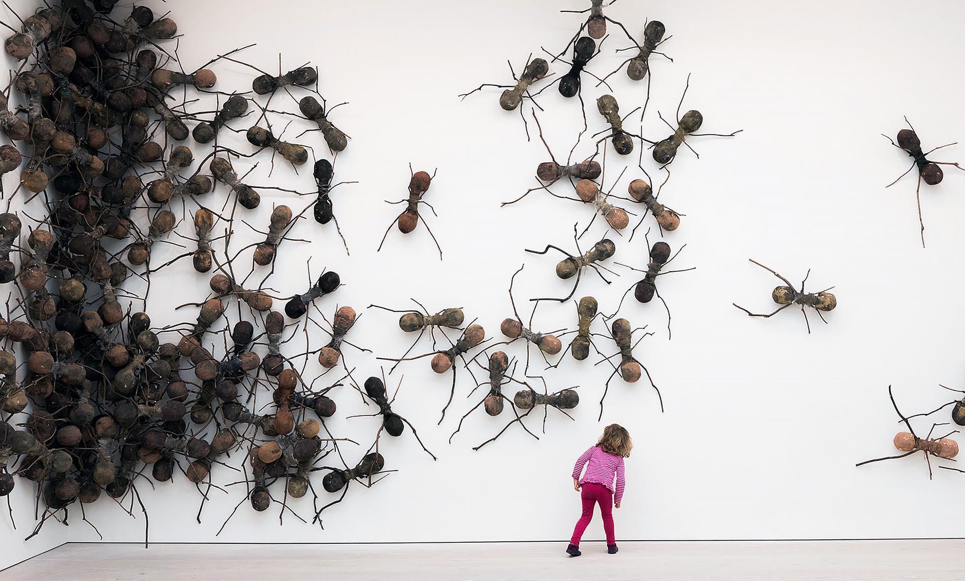 Rafael gomezbarros e le formiche giganti obliquo design - Formiche in casa ...